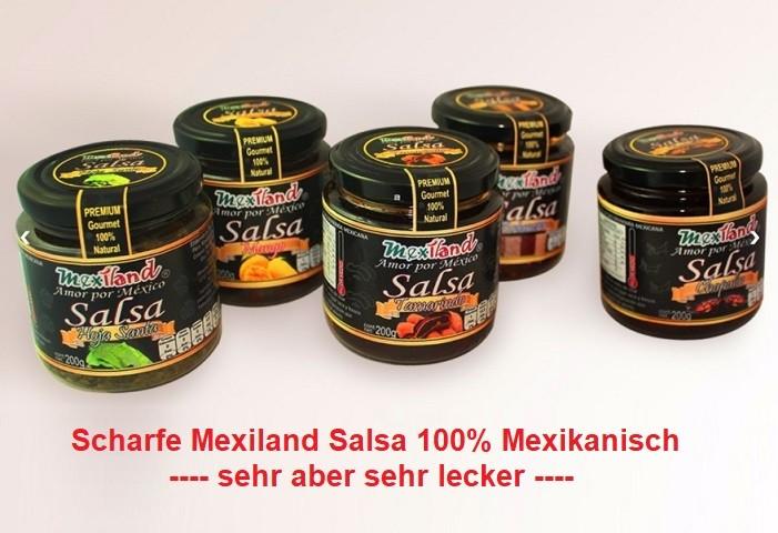Scharfe Salsa Mexiland
